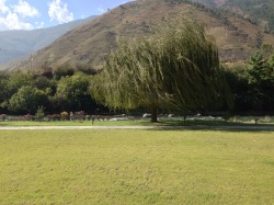 Hotel grounds - Terma Linca